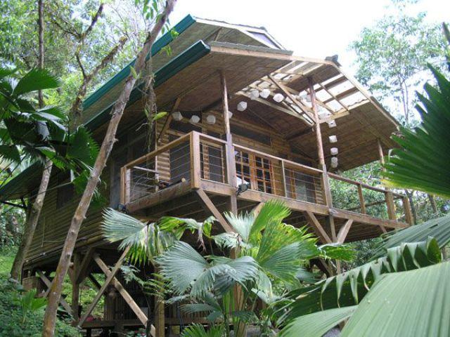 Incrível comunidade de casas nas árvores  12