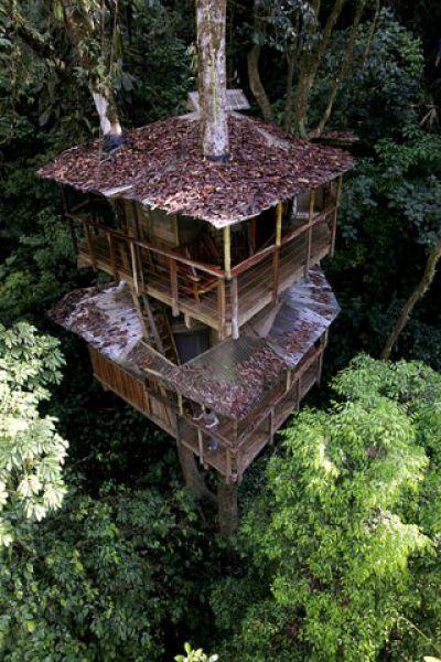 Incrível comunidade de casas nas árvores  13
