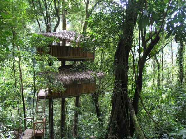 Incrível comunidade de casas nas árvores  14