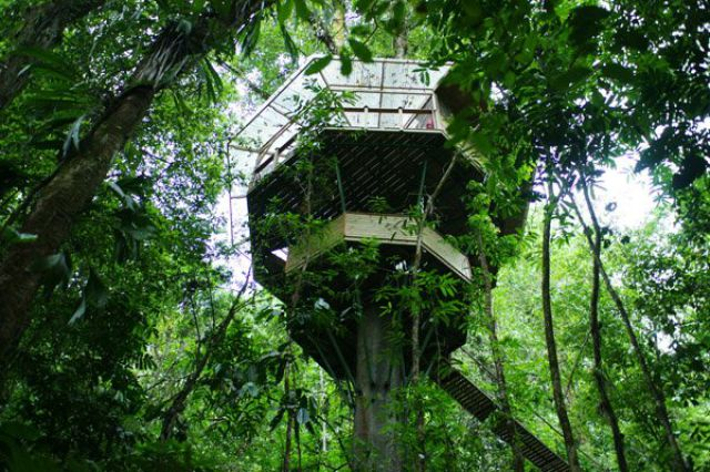 Incrível comunidade de casas nas árvores  21