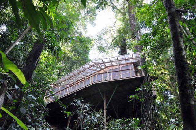 Incrível comunidade de casas nas árvores  26