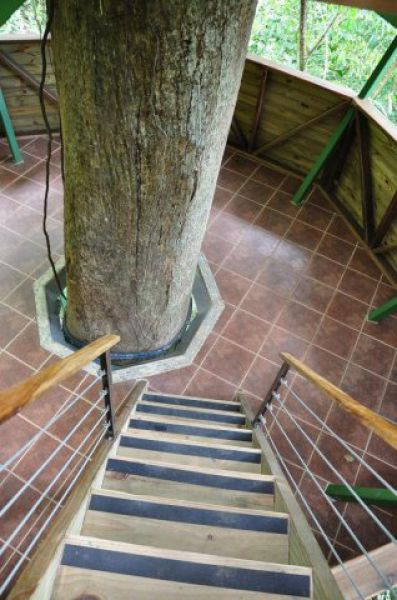 Incrível comunidade de casas nas árvores  28