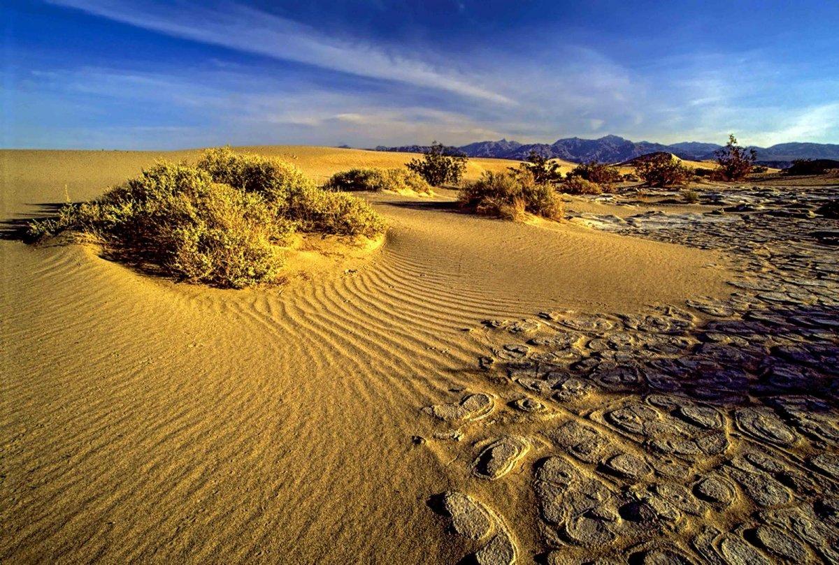 Nature Conservancy: as 20 melhores fotos da Natureza de 2013 01