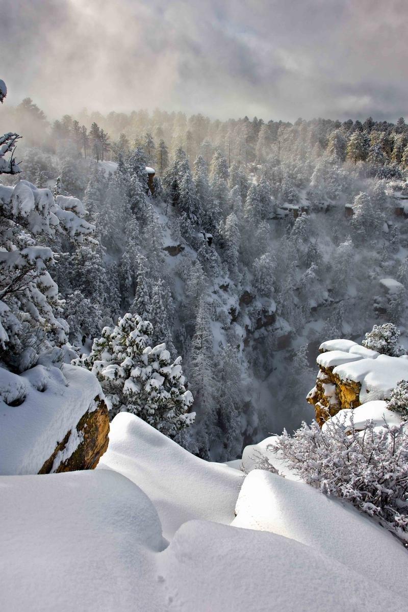 Nature Conservancy: as 20 melhores fotos da Natureza de 2013 03