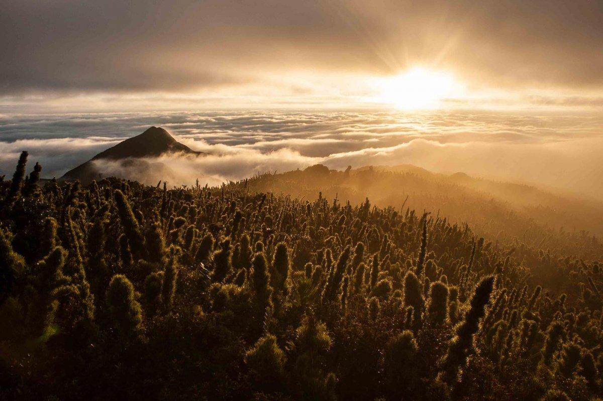Nature Conservancy: as 20 melhores fotos da Natureza de 2013 09