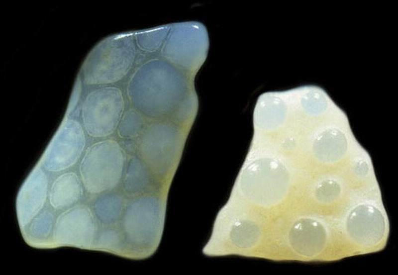 Grãos de areia ao microscópio  08