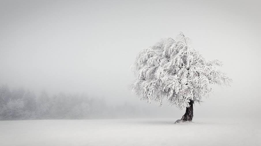 50 incríveis paisagens de Inverno