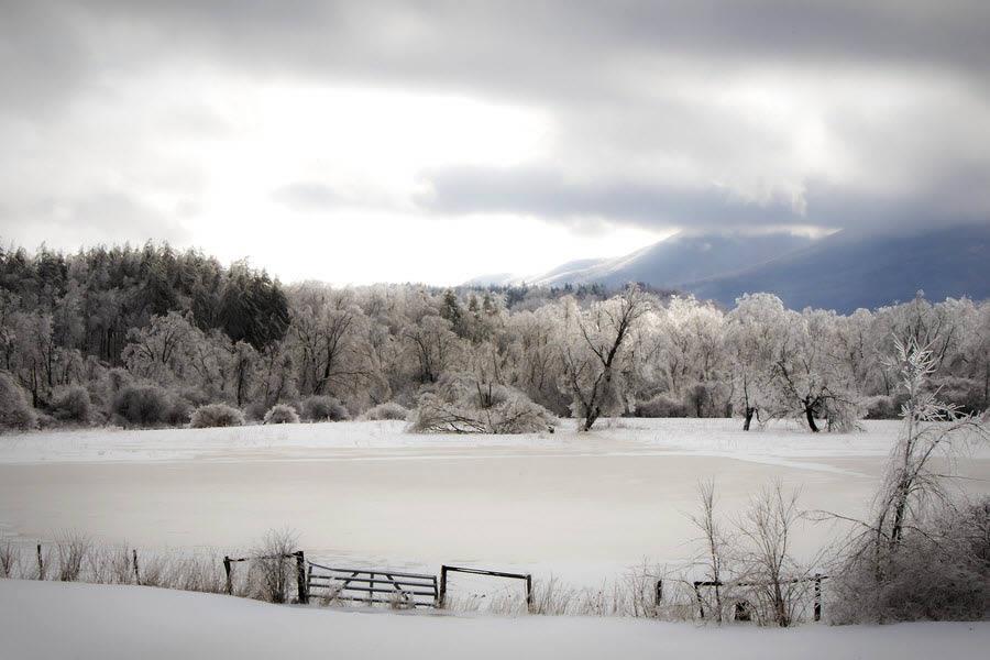 50 incr�veis paisagens de Inverno
