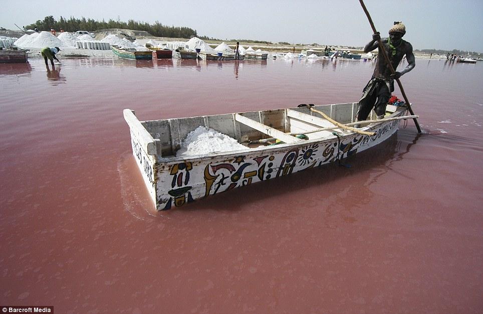Lago Rosa no Senegal 01