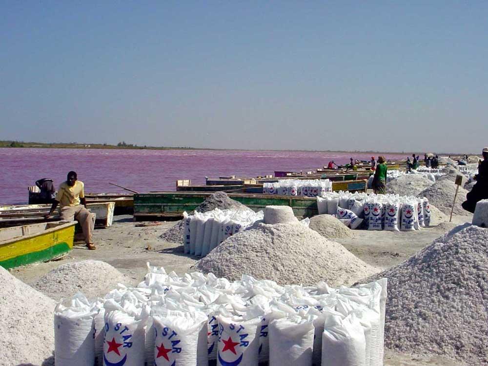 Lago Rosa no Senegal 07