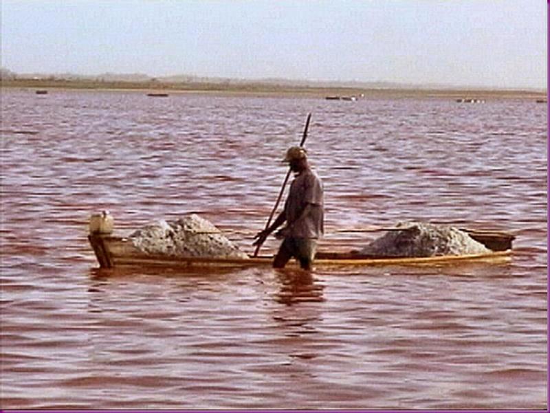 Lago Rosa no Senegal 08