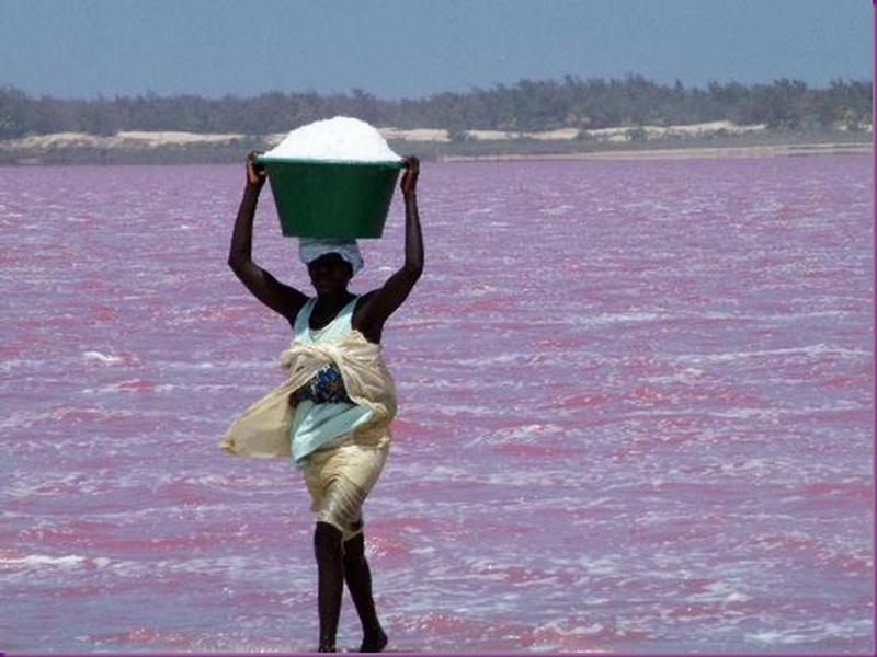Lago Rosa no Senegal 09