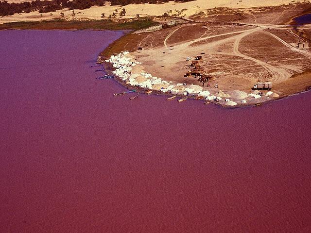 Lago Rosa no Senegal 12