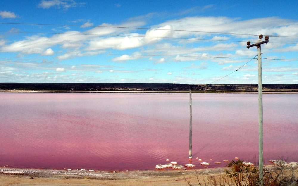 Lago Rosa no Senegal 16