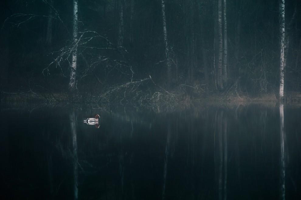 Magníficas fotografias atmosféricas finlandesas 05