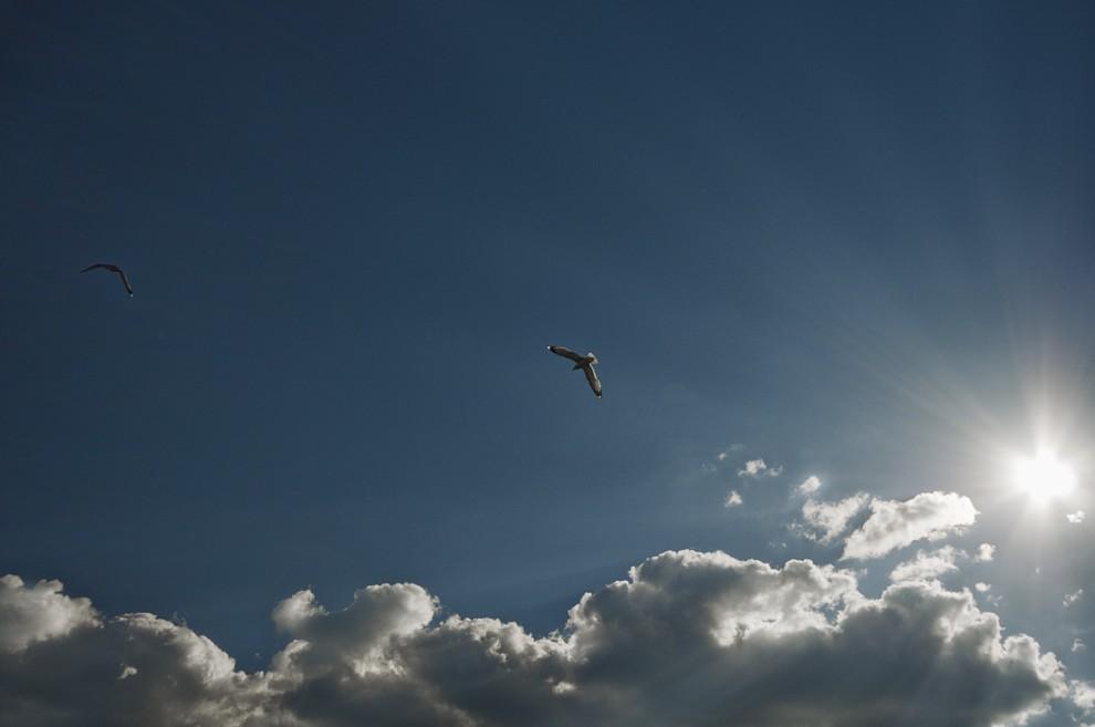 Magníficas fotografias atmosféricas finlandesas 44