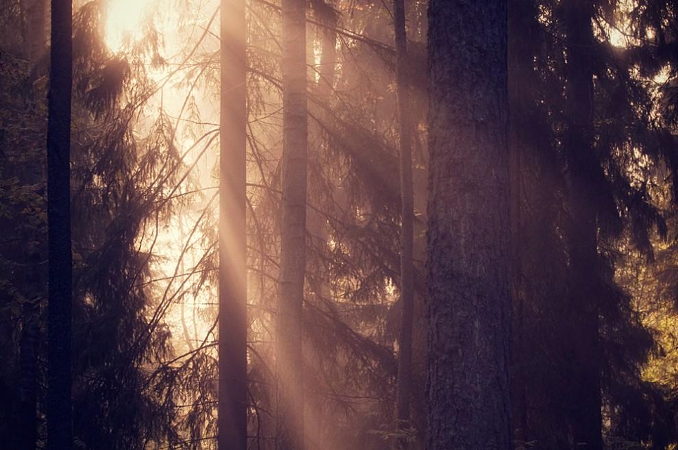 Magníficas fotografias atmosféricas finlandesas 45