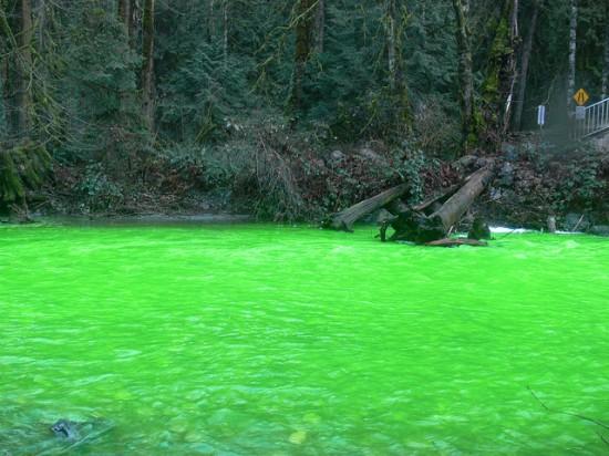 Um rio verde no Canadá 06