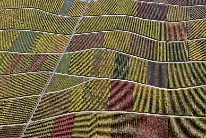 A arqueologia aérea do fotógrafo Klaus Leidorf 08