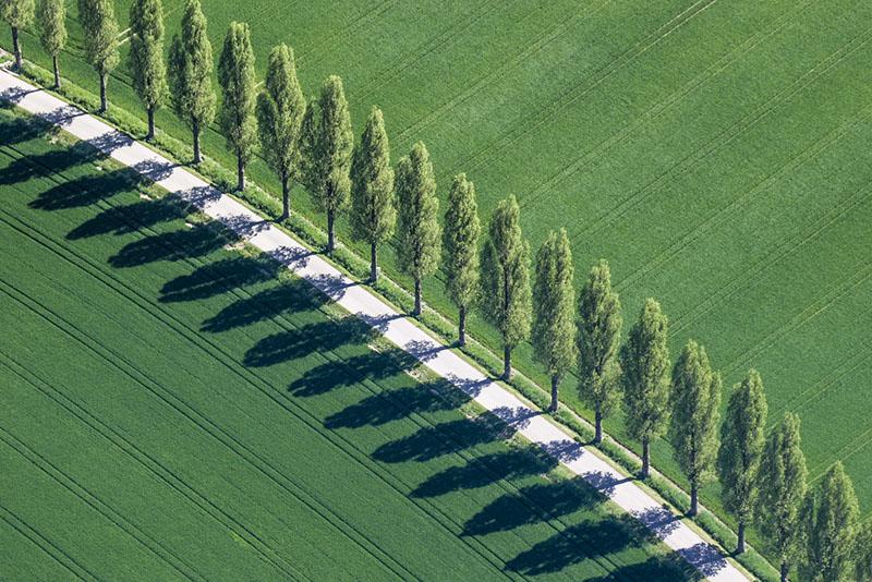 A arqueologia aérea do fotógrafo Klaus Leidorf 10
