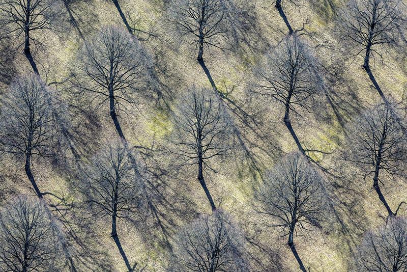 A arqueologia aérea do fotógrafo Klaus Leidorf 13