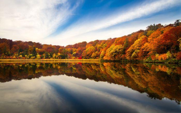 Belas paisagens dedicadas a mulher em seu dia 09