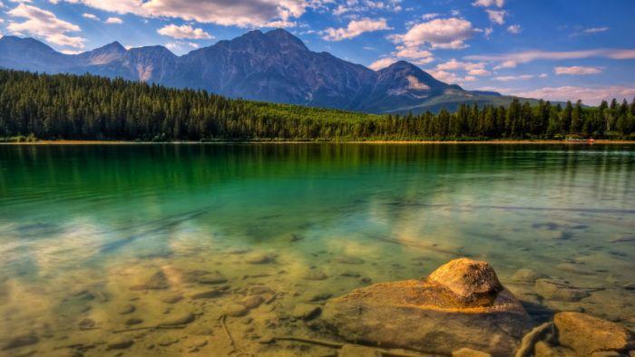 Belas paisagens dedicadas a mulher em seu dia 39