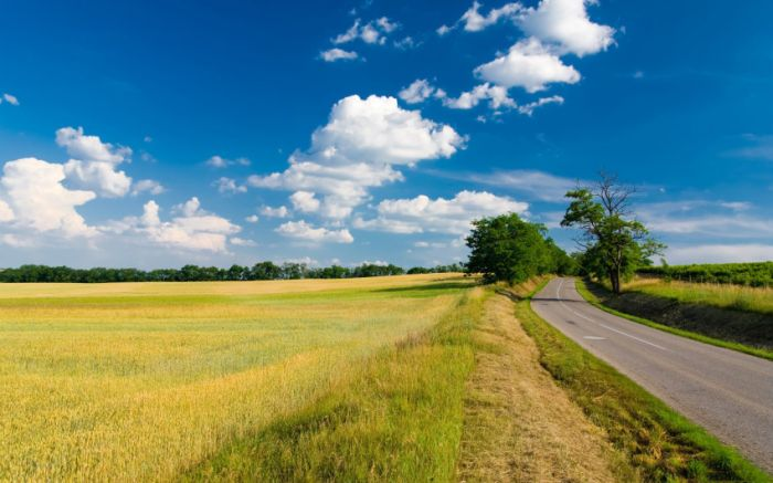 Belas paisagens dedicadas a mulher em seu dia 40