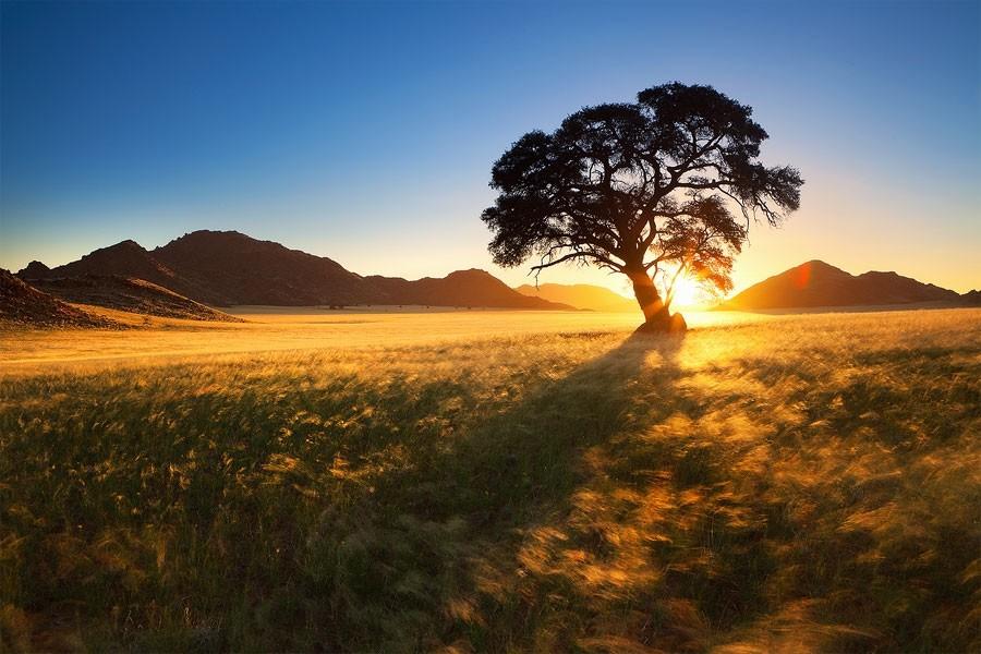 Maravilhas da Natureza - Paisagens da Namíbia 16