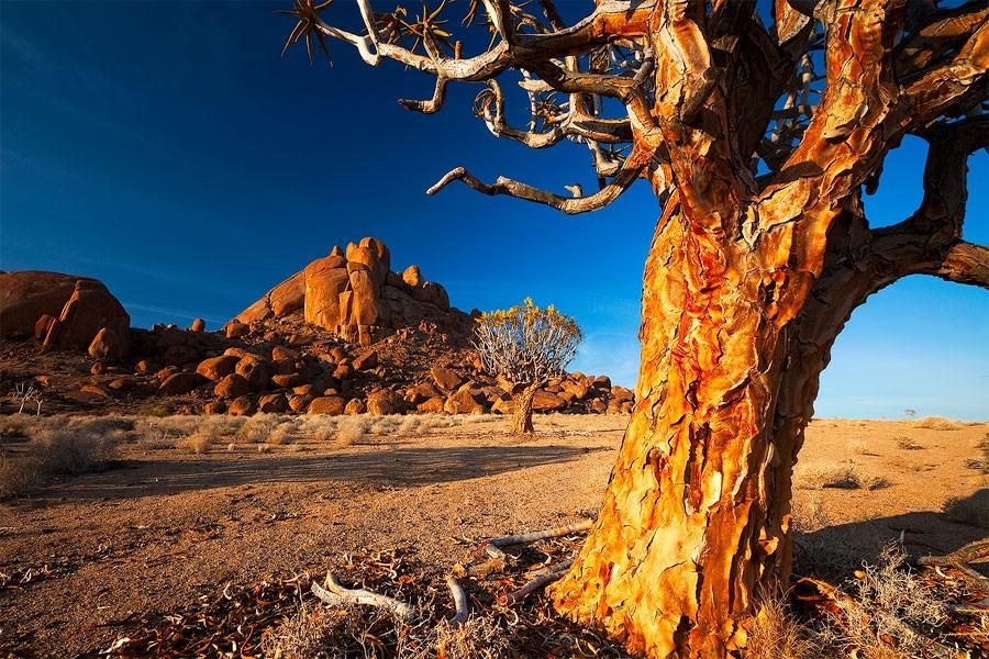 Maravilhas da Natureza - Paisagens da Namíbia 19