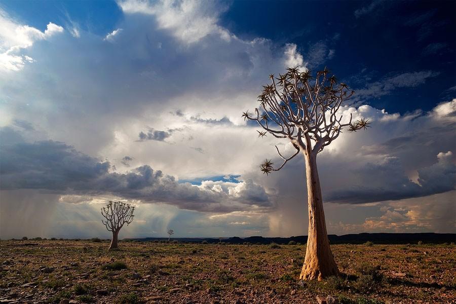 Maravilhas da Natureza - Paisagens da Namíbia 20