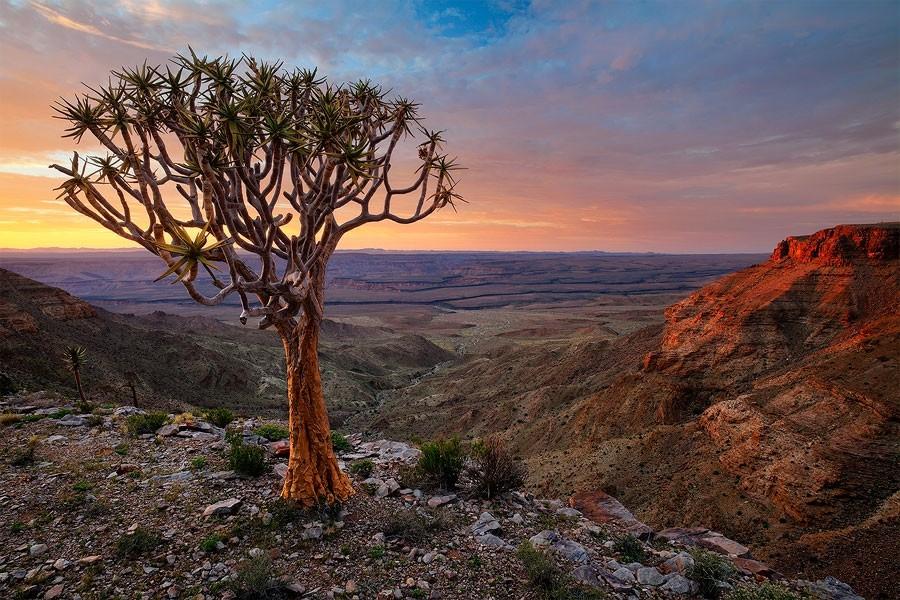 Maravilhas da Natureza - Paisagens da Namíbia 24