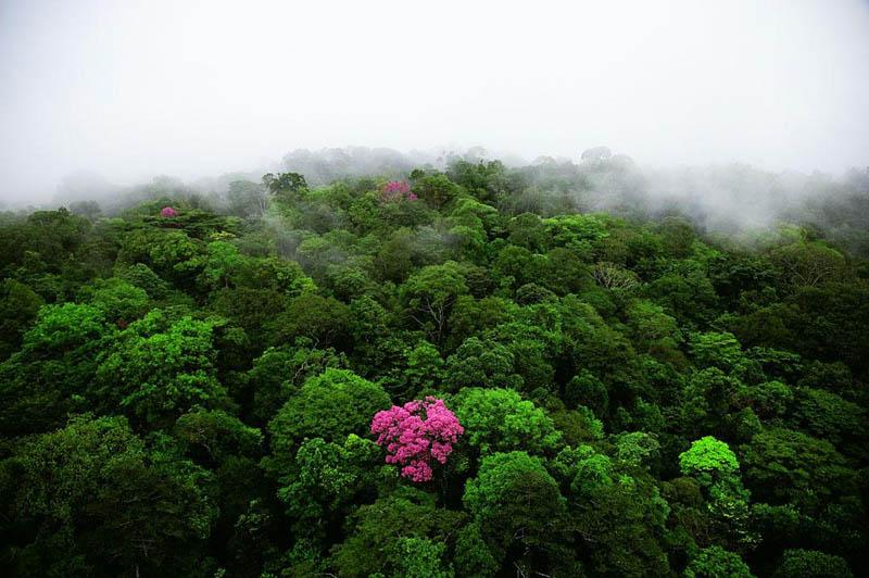 25 alucinantes fotografias aéreas de todo o mundo 05