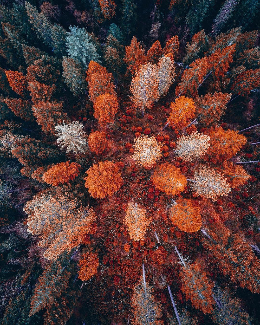Imagens aéreas de paisagens vibrantes do fotógrafo Niaz Uddin 07