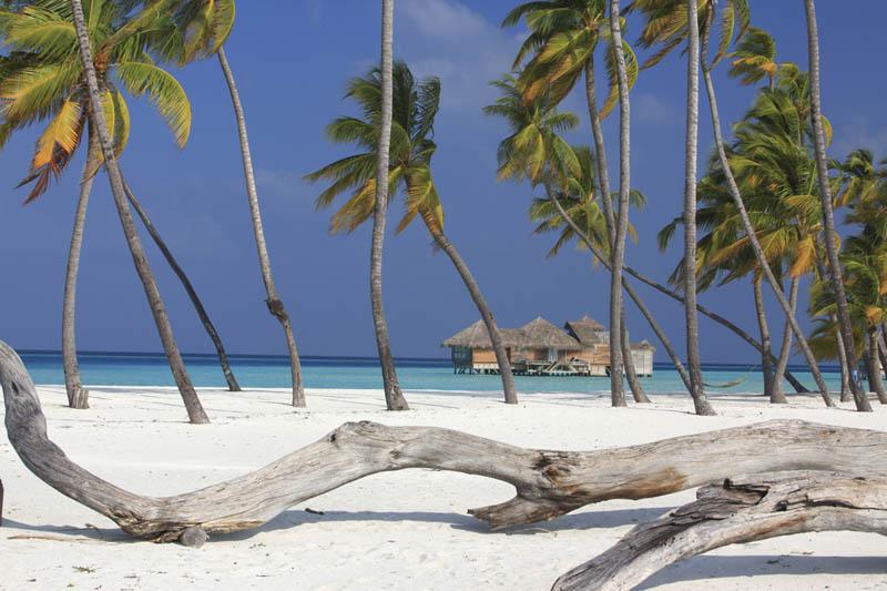 As belas palafitas de Soneva Gili nas Maldivas, onde seus sonhos de verão dormem 25