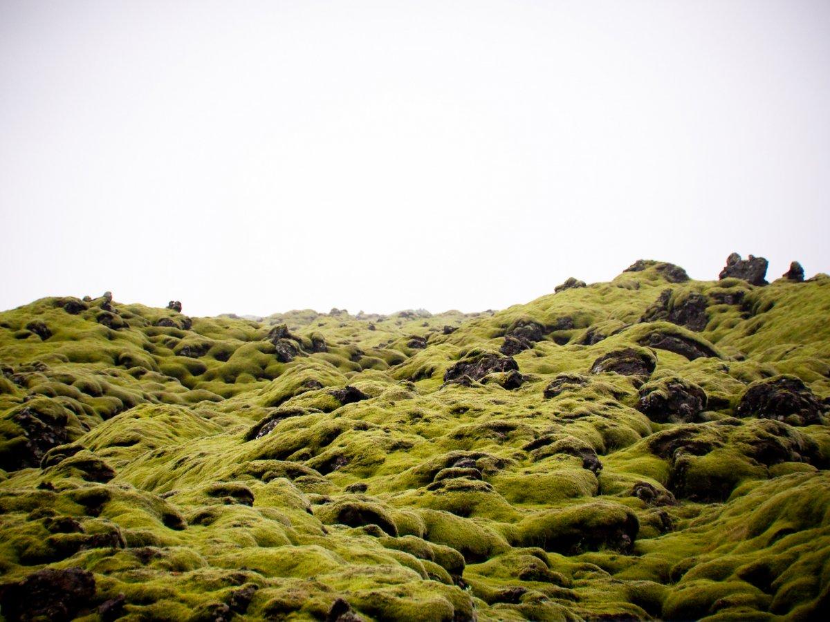 32 fotos que v�o fazer voc� querer viajar para a Isl�ndia 17