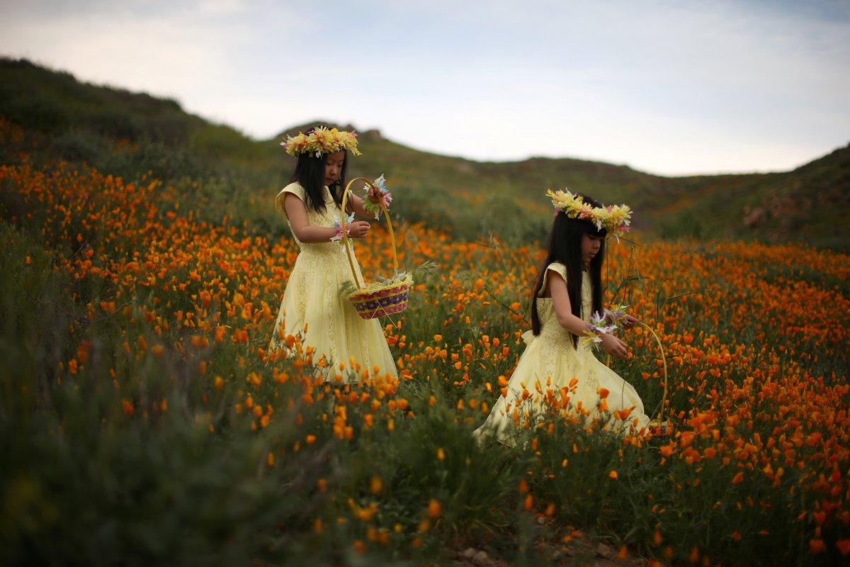 O ano em fotos impressionantes registradas pela premiada equipe de fotografia da Reuters em 2017 14