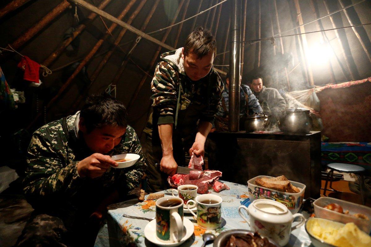 Como é trabalhar na pecuária de renas no ártico, Rússia 15