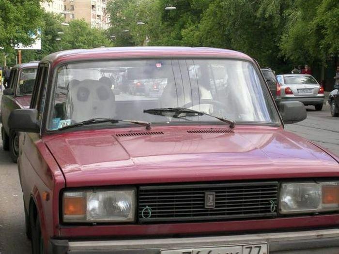 Somente na Rússia 2 09
