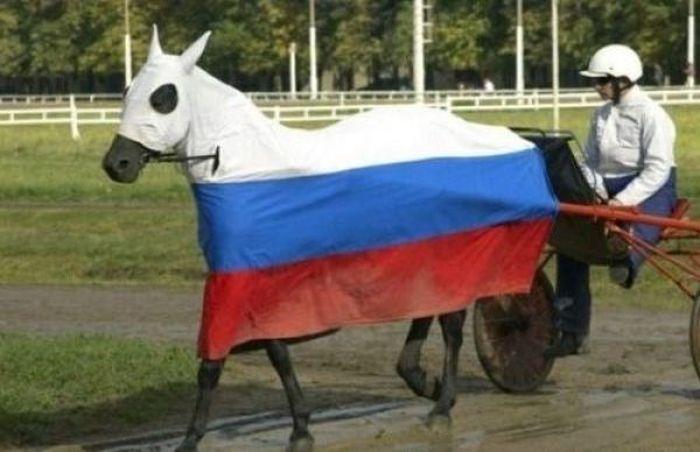Somente na Rússia 2 41