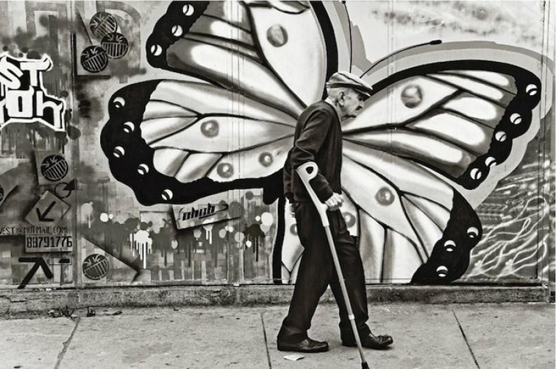 Metamorfose. por David Taggart.