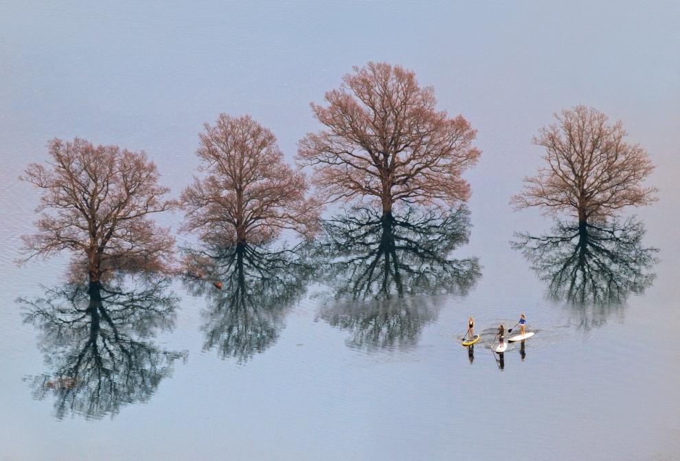 Conseqüências de uma inundação em Liubliana, Eslovênia. Por Ales Komovec.