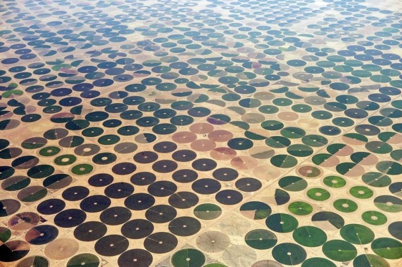 Campos de cultivo na Arabia.