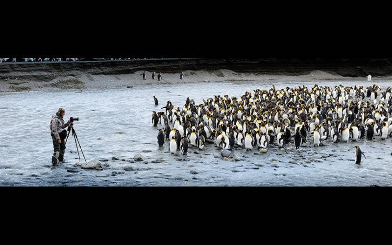 O fotógrafo Alex Bernasconi captura a foto perfeita no pólo sul.
