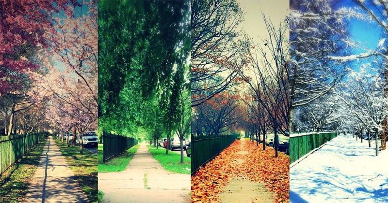 Uma rua, quatro estações.