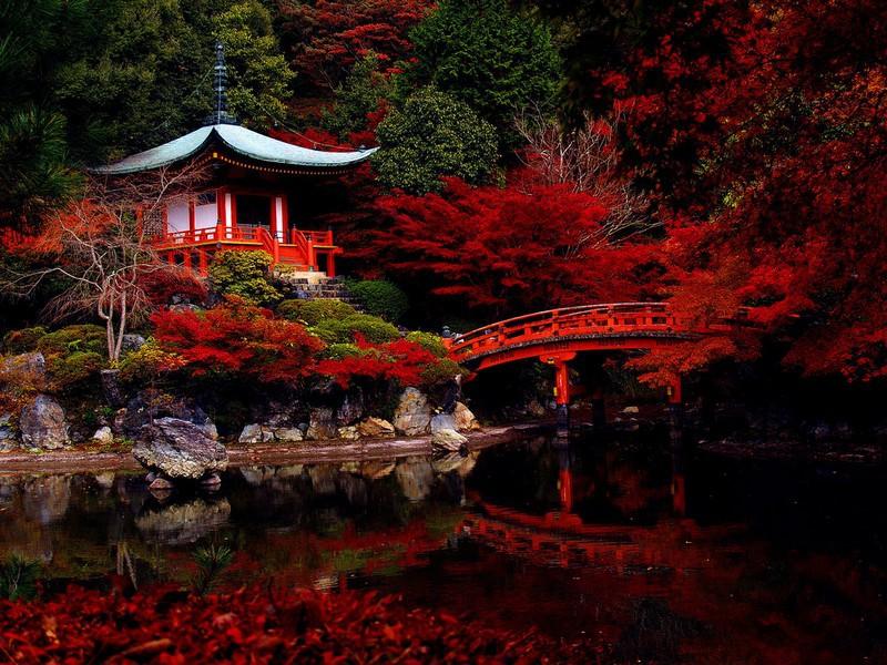 Jardim japonês.