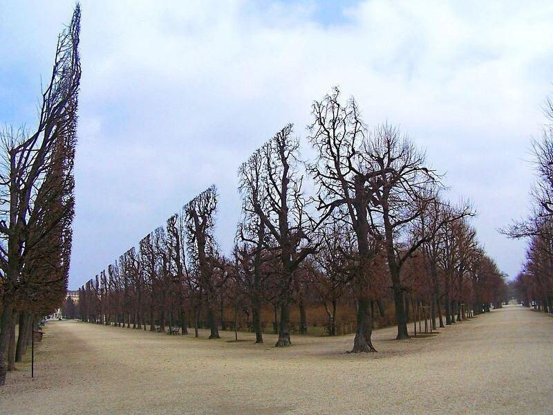 Jardim Schoenbrunn, em Viena.