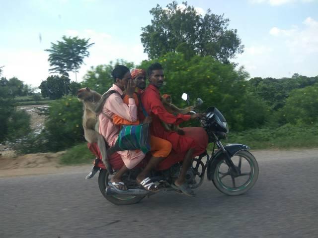 Enquanto isso na Índia.