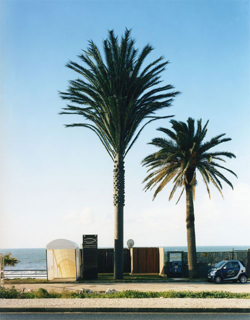 31 Exemplos de torres de celular disfarçadas 21