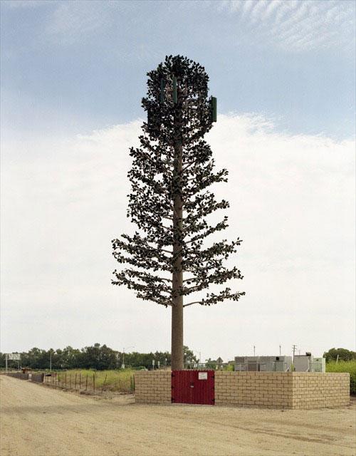 31 Exemplos de torres de celular disfarçadas 22